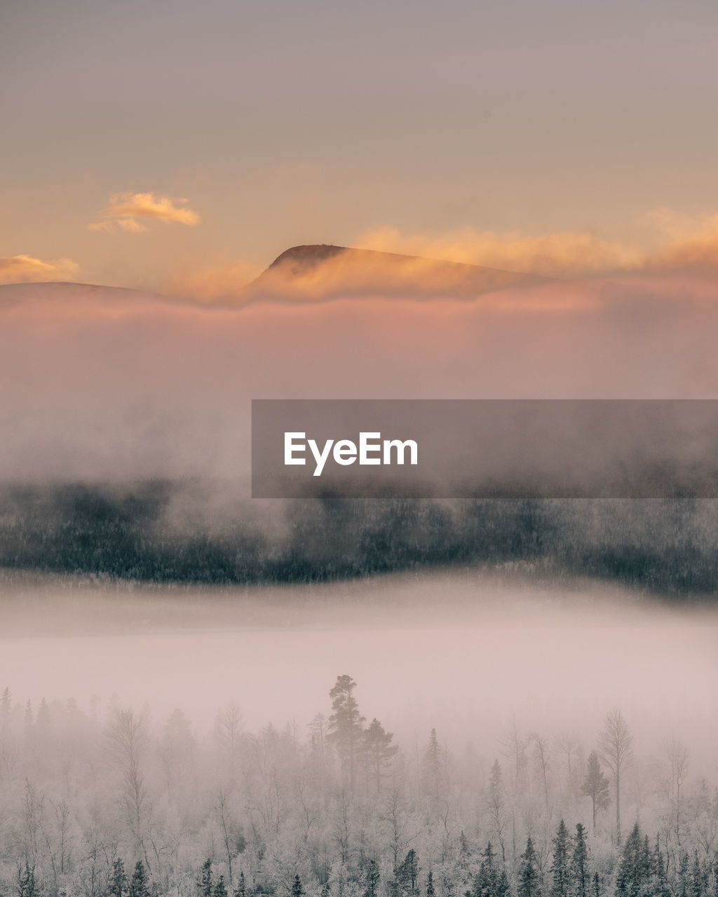 beauty in nature, scenics - nature, sky, tranquil scene, tranquility, fog, tree, cloud - sky, idyllic, plant, non-urban scene, sunset, no people, lake, nature, cold temperature, remote, orange color, water, outdoors, hazy