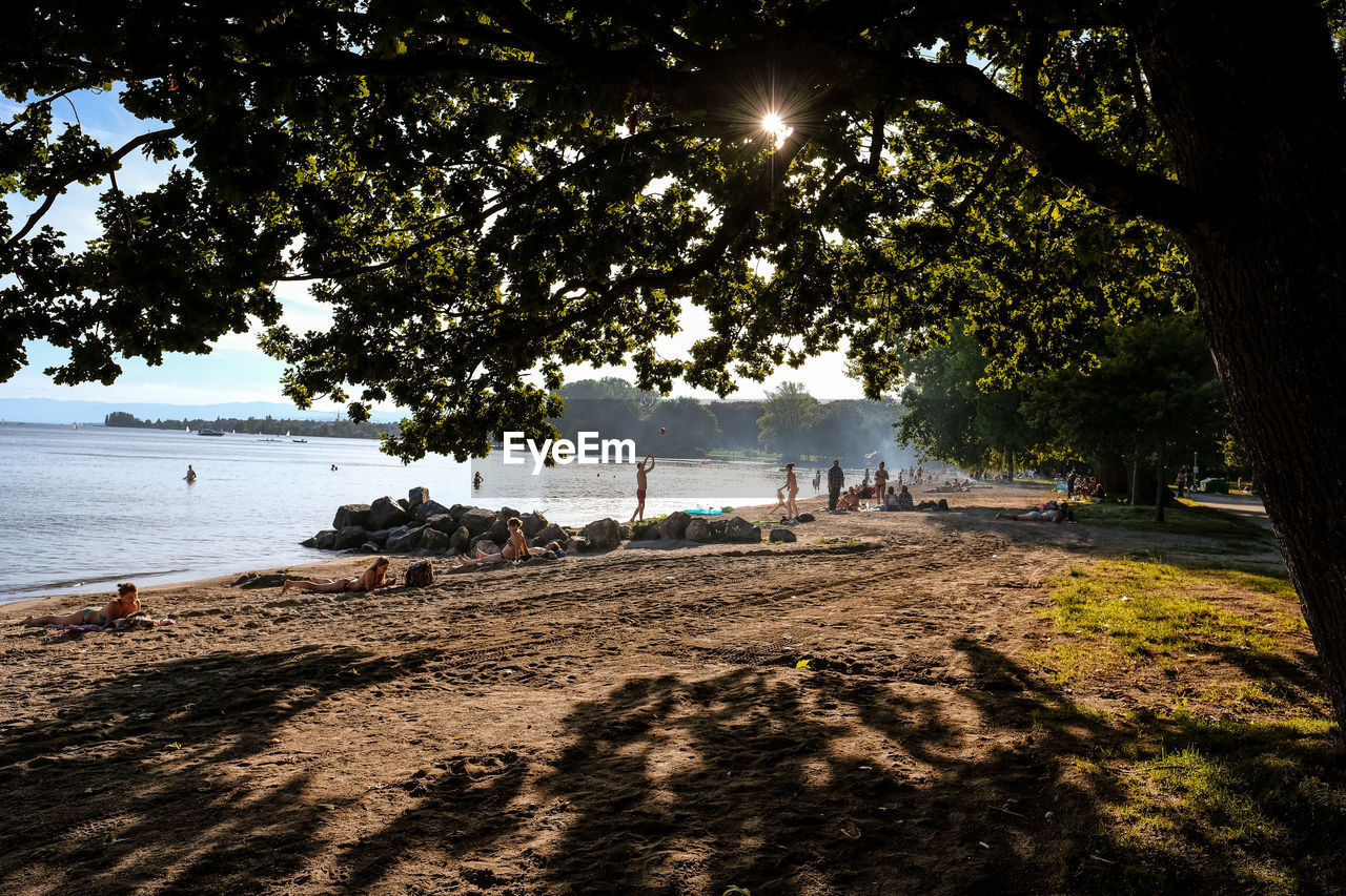 tree, nature, outdoors, large group of people, water, day, branch, beauty in nature, sky, people