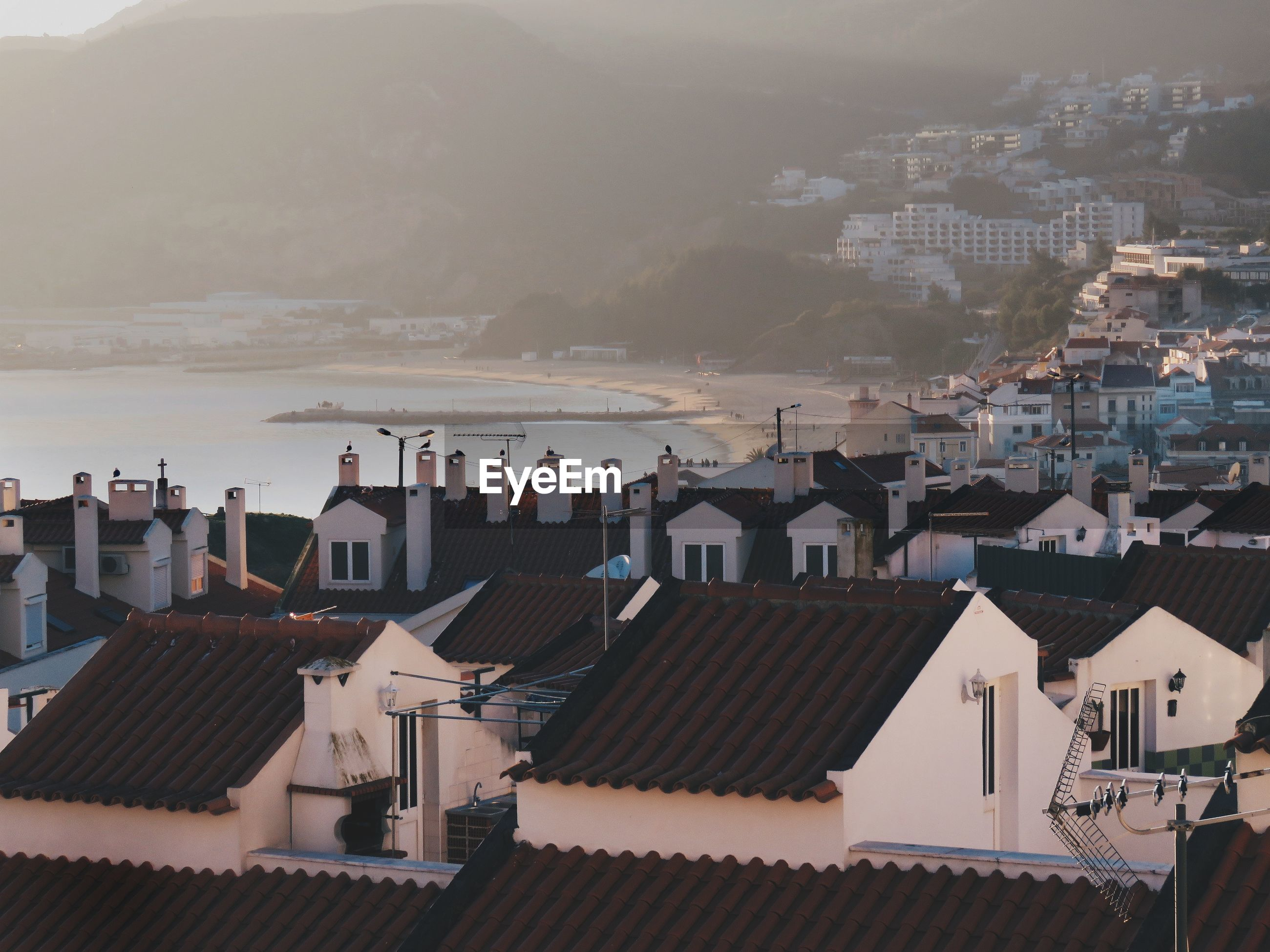 High angle view of houses in town by sea