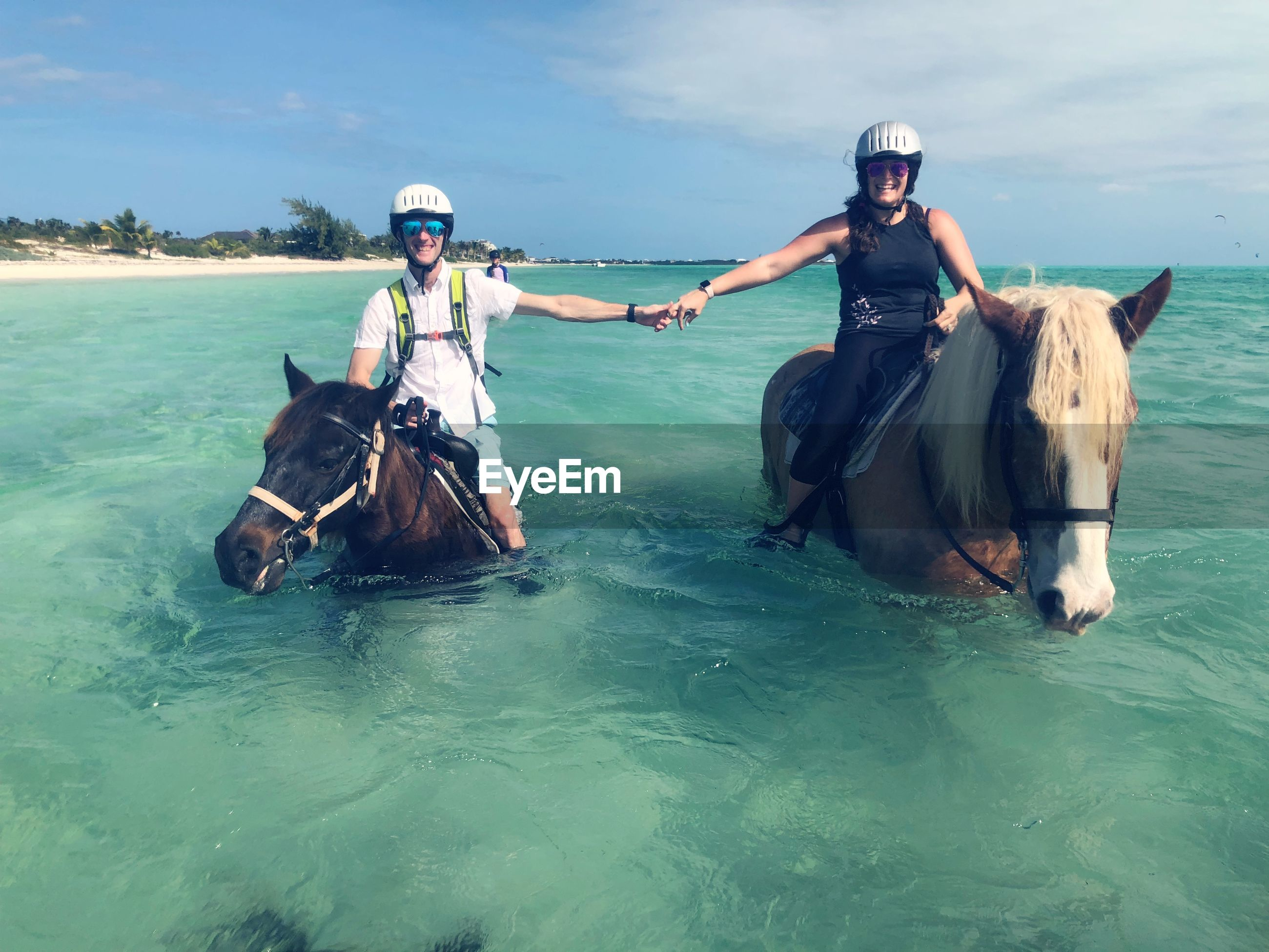 Friends holding hands while sitting on horses in sea