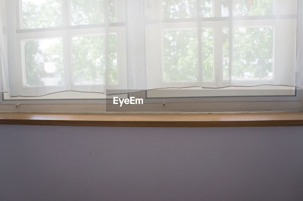 window, indoors, day, no people, home interior, window sill, curtain, domestic room, tree, close-up