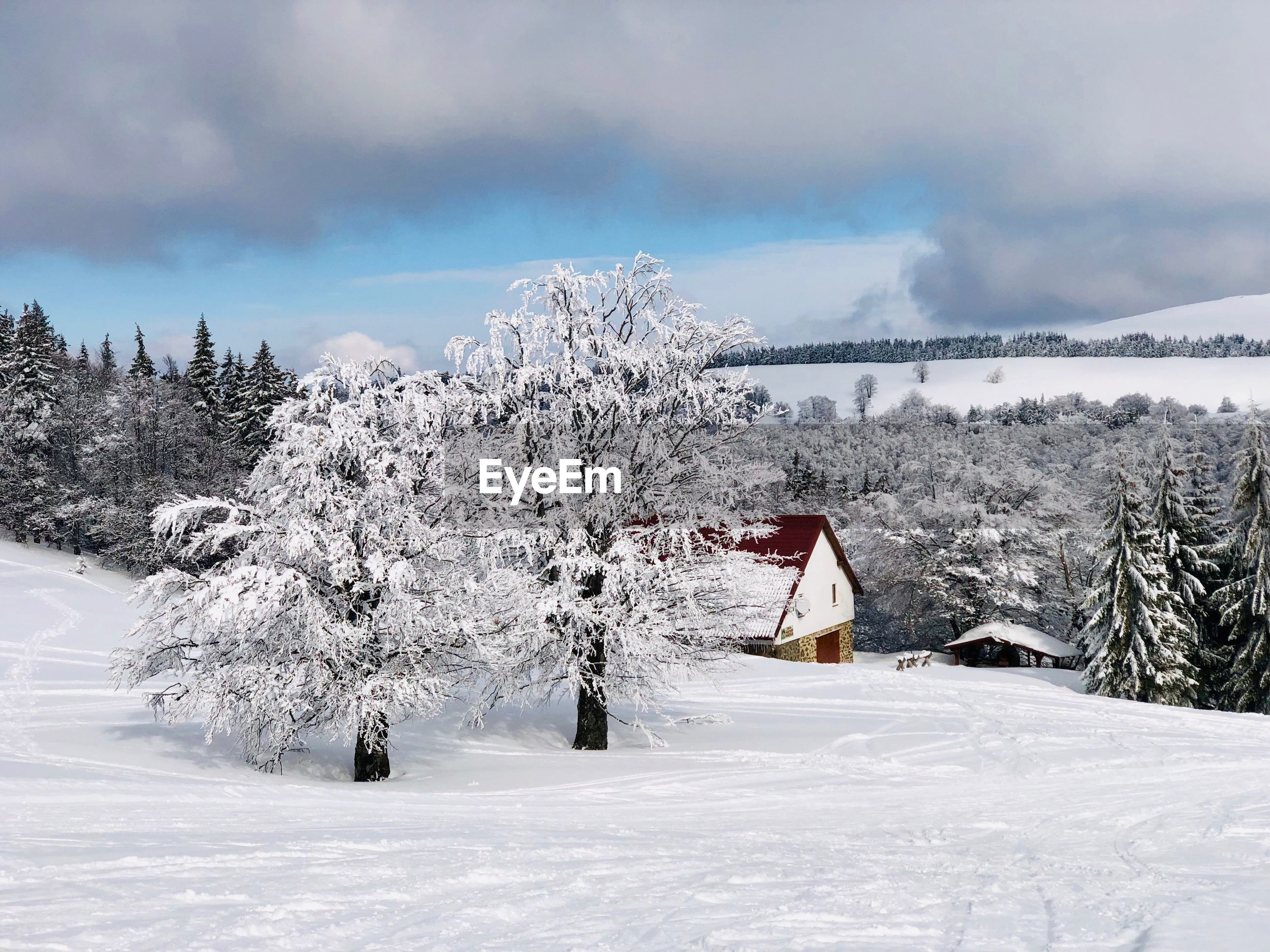 Lonely house in the mountains surrounded by forest covered in snow