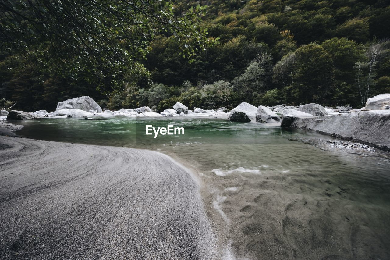 Scenic view of river flowing against trees at valle verzasca