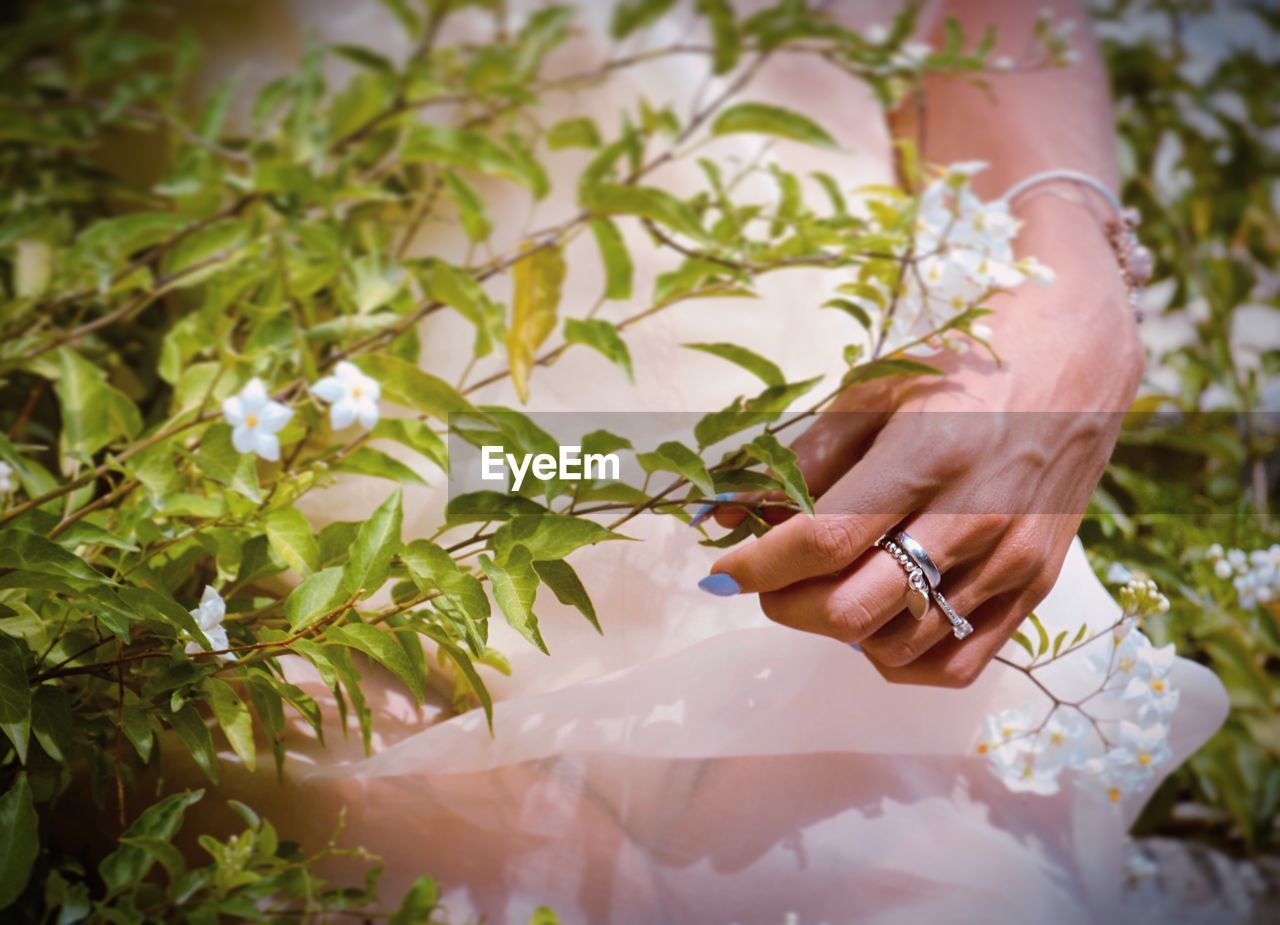 human hand, hand, one person, real people, human body part, plant, women, wedding, lifestyles, adult, newlywed, bride, holding, ring, event, day, nature, jewelry, life events, outdoors, finger, wedding ceremony