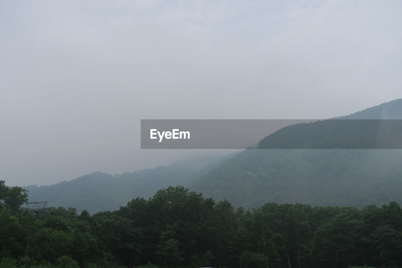 mountain, beauty in nature, tree, scenics - nature, sky, tranquil scene, tranquility, plant, fog, no people, non-urban scene, nature, mountain range, environment, landscape, outdoors, copy space, day, idyllic, hazy