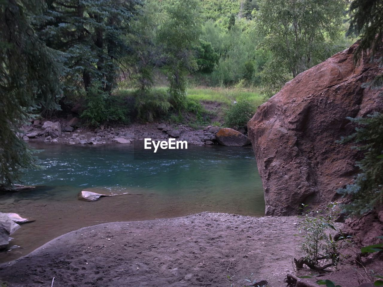 nature, water, rock - object, tree, outdoors, beauty in nature, scenics, no people, day, tranquility, animal themes, bird