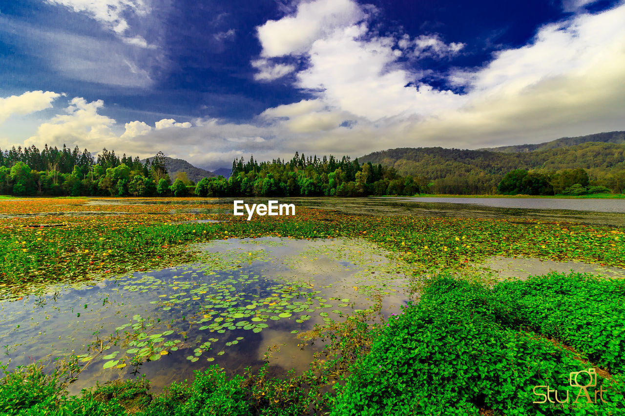 scenics, beauty in nature, cloud - sky, nature, tranquility, water, tranquil scene, sky, outdoors, no people, mountain, lake, day, landscape, tree