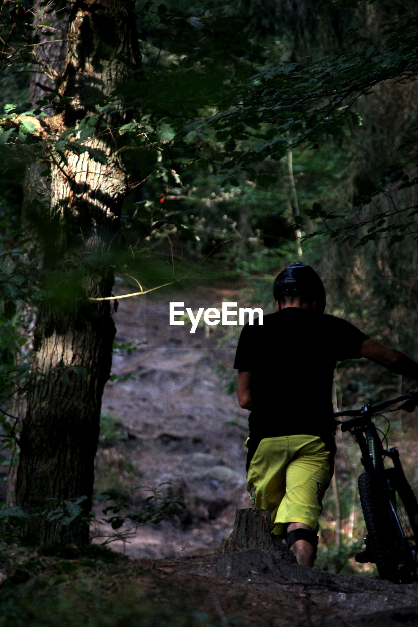 Rear view of man with bicycle at forest