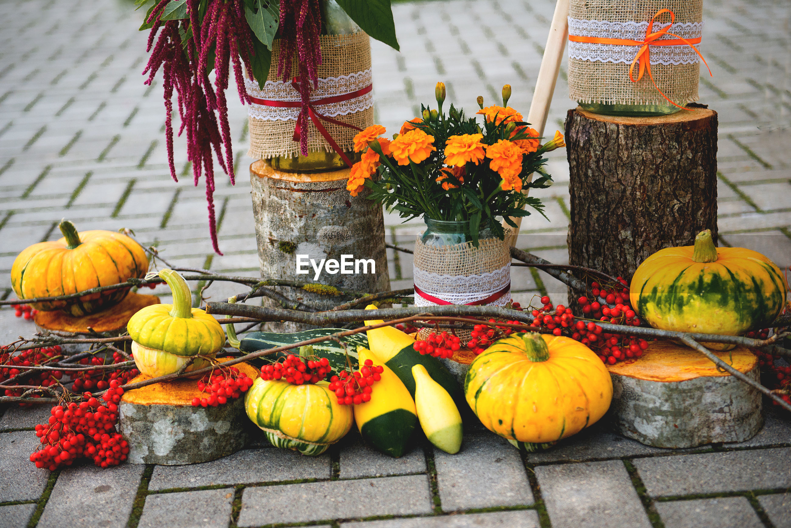 High angle view of pumpkins and flowers on street