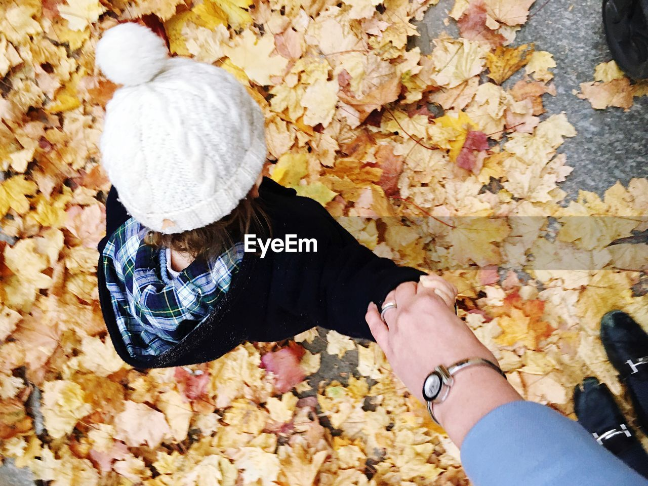 HIGH ANGLE VIEW OF WOMAN HAND HOLDING LEAVES