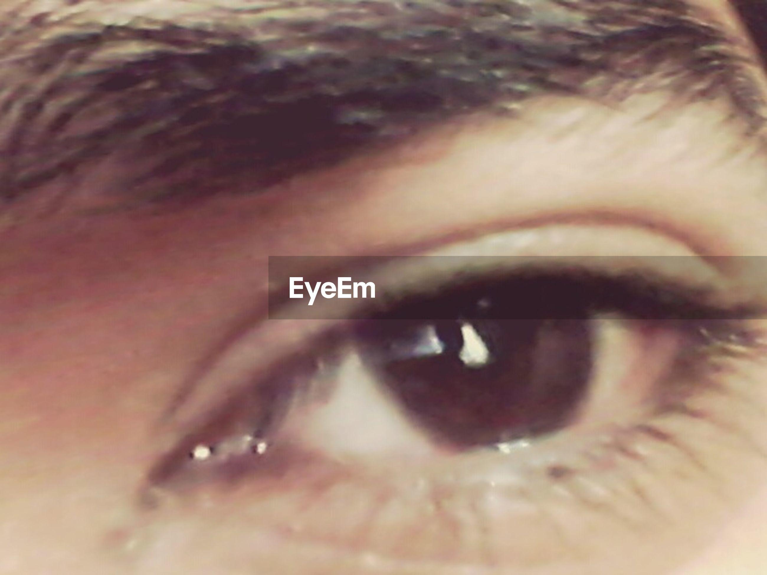 human eye, close-up, eyelash, eyesight, human face, headshot, sensory perception, human skin, looking at camera, lifestyles, eyebrow, portrait, extreme close-up, part of, extreme close up, eyeball, iris - eye