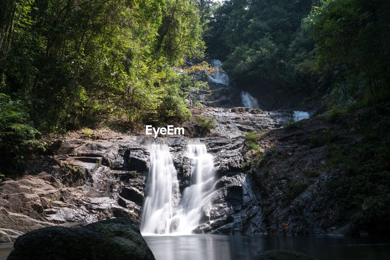 water, tree, waterfall, plant, scenics - nature, motion, flowing water, long exposure, beauty in nature, forest, rock, nature, solid, land, blurred motion, rock - object, no people, growth, power in nature, outdoors, flowing, rainforest, falling water