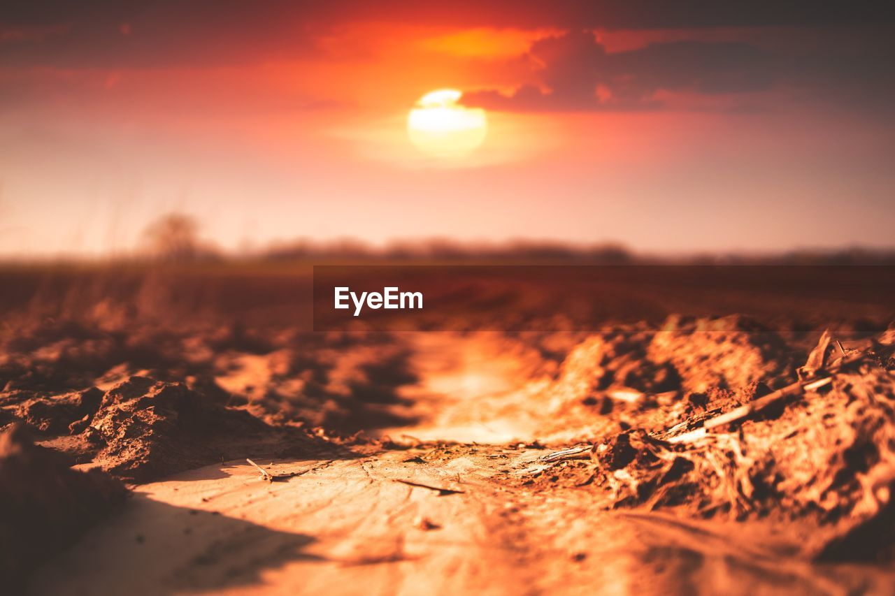 sunset, sky, orange color, sunlight, beauty in nature, nature, scenics - nature, environment, tranquility, landscape, tranquil scene, land, no people, sun, selective focus, field, outdoors, non-urban scene, idyllic, cloud - sky, bright, surface level