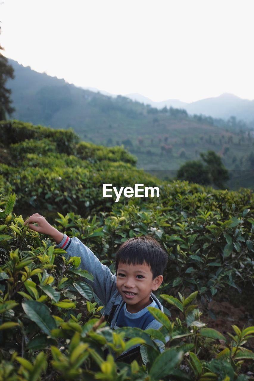 Portrait of boy standing amidst plants on mountain against clear sky