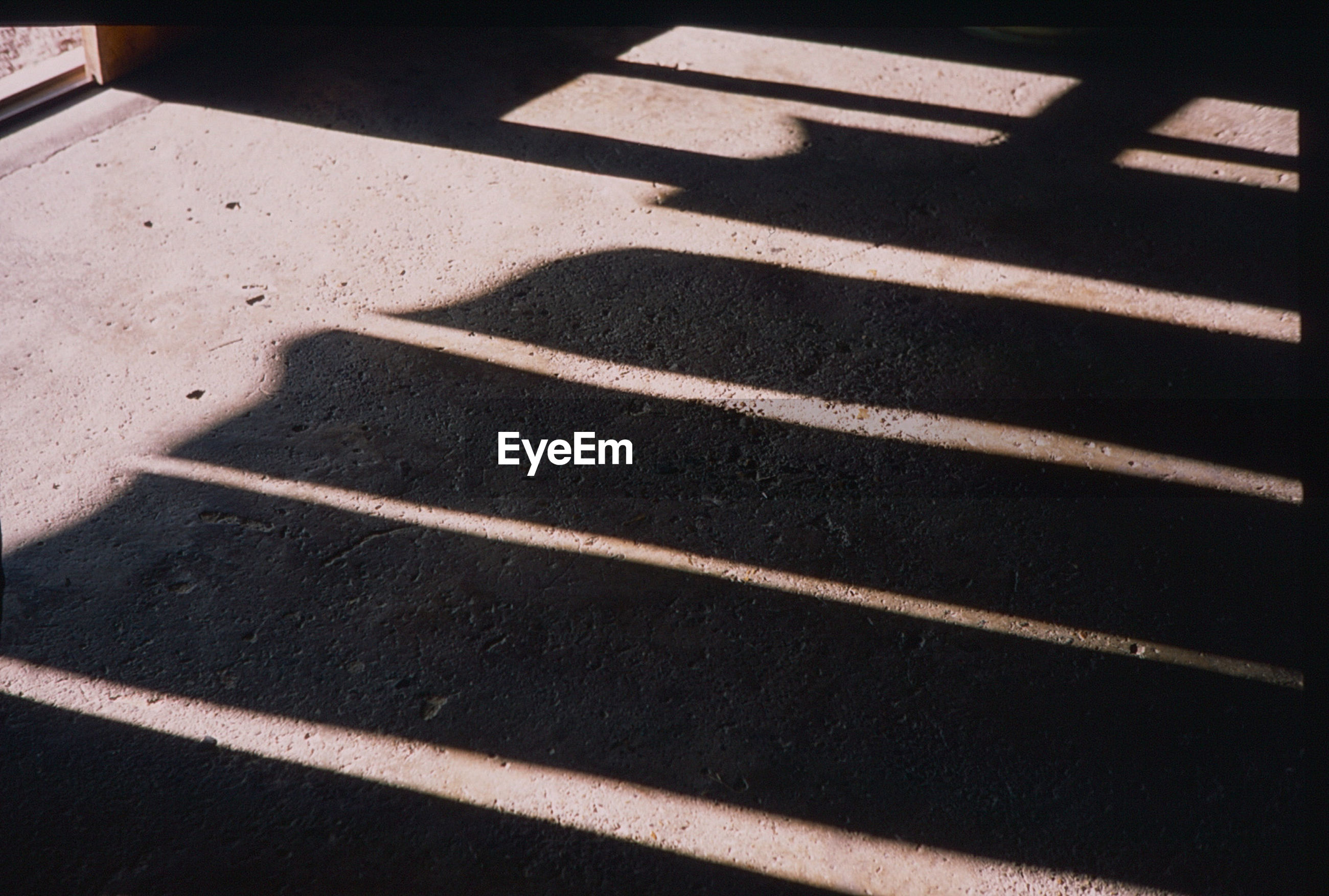 shadow, sunlight, high angle view, day, no people, outdoors, close-up
