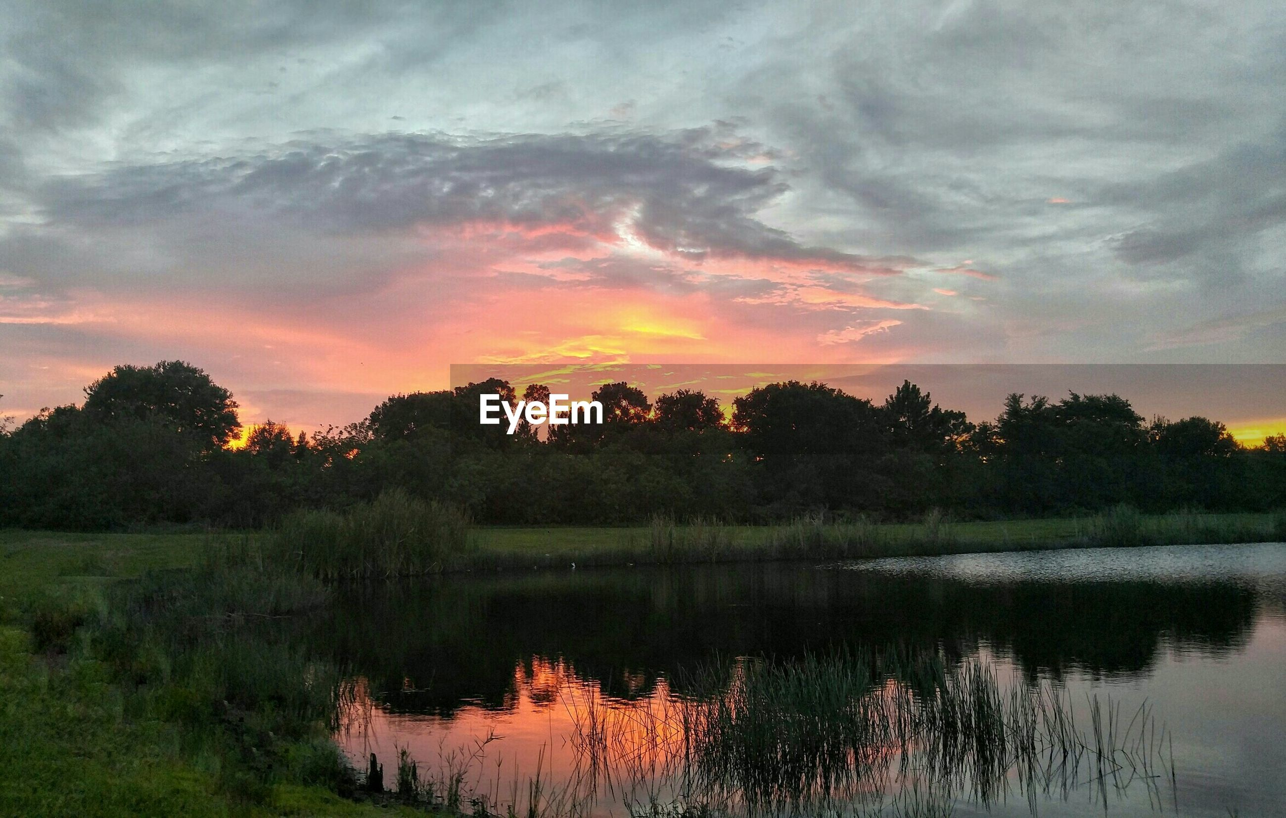 sunset, water, reflection, tree, lake, tranquil scene, tranquility, sky, scenics, beauty in nature, nature, cloud - sky, orange color, idyllic, cloud, non-urban scene, growth, outdoors, cloudy, dramatic sky, no people, calm, non urban scene, landscape, majestic, standing water, plant, grass, remote