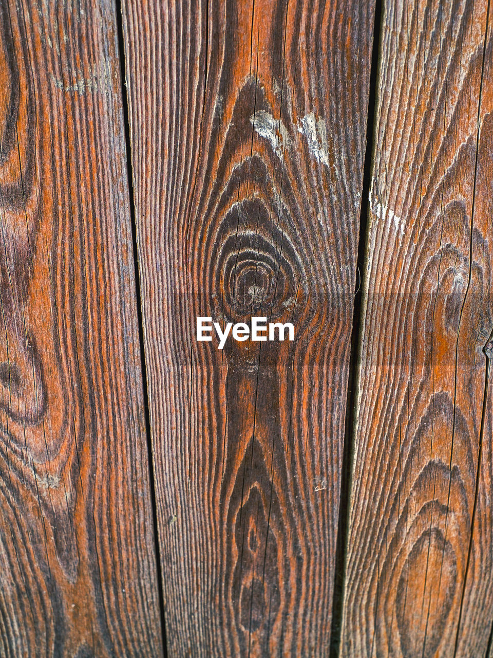 wood - material, backgrounds, wood grain, pattern, textured, timber, nature, brown, hardwood, cross section, pine tree, full frame, close-up, tree ring, no people, tree, knotted wood, oak tree, time, day