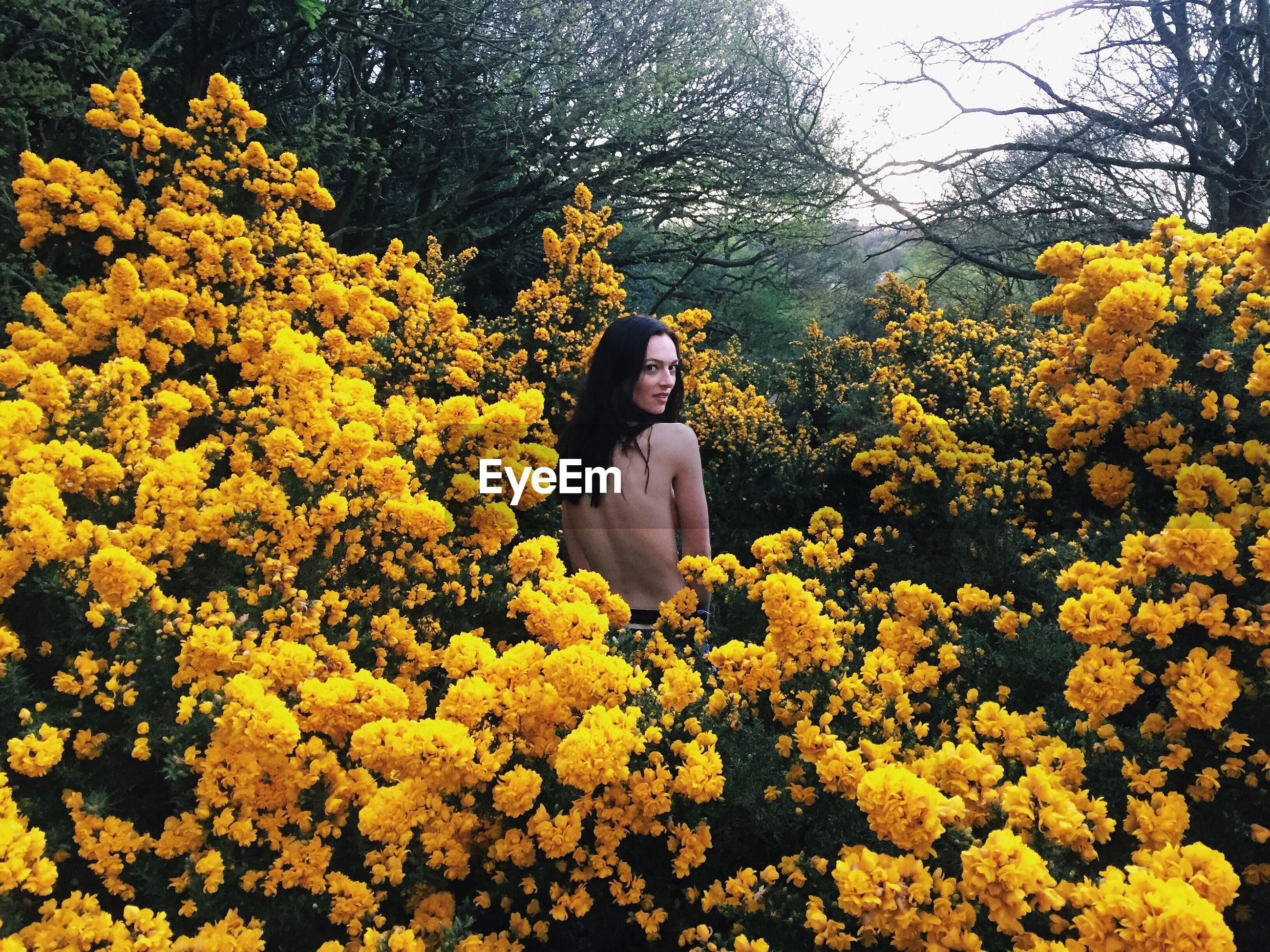 flower, yellow, tree, lifestyles, leisure activity, growth, young adult, casual clothing, beauty in nature, nature, standing, freshness, person, fragility, young women, season, full length, three quarter length