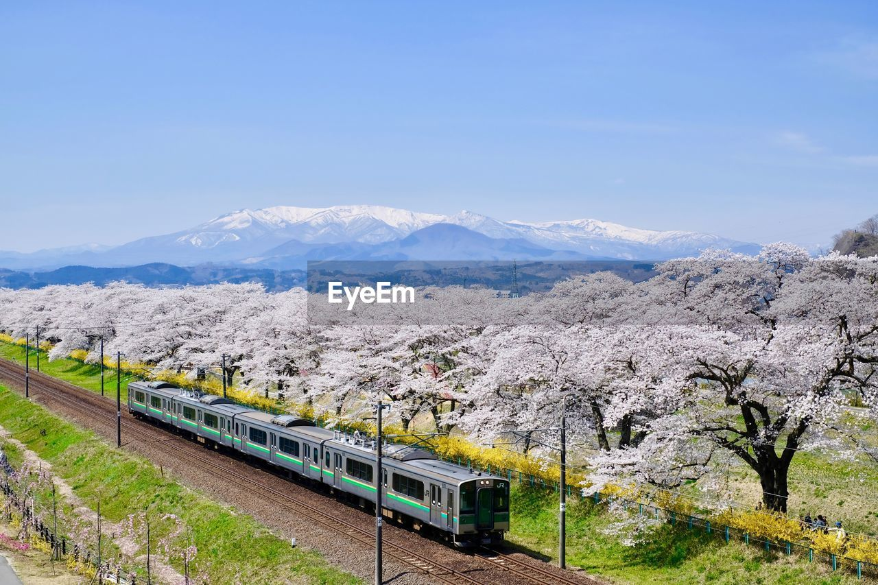 High Angle View Of Train By Trees On Field Against Blue Sky