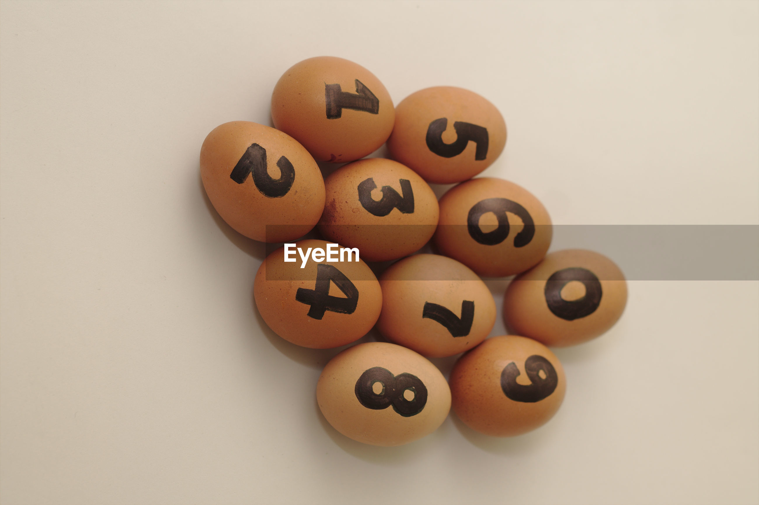 High angle view of eggs against white background