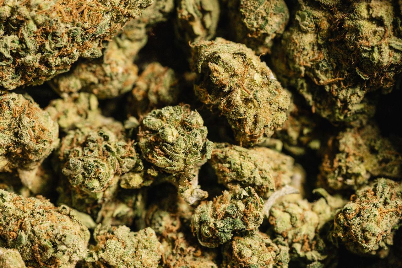 Full Frame Shot Of Dried Marijuana