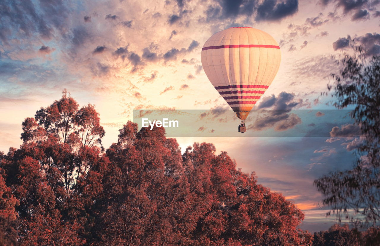 DIGITAL COMPOSITE IMAGE OF HOT AIR BALLOONS AGAINST SKY