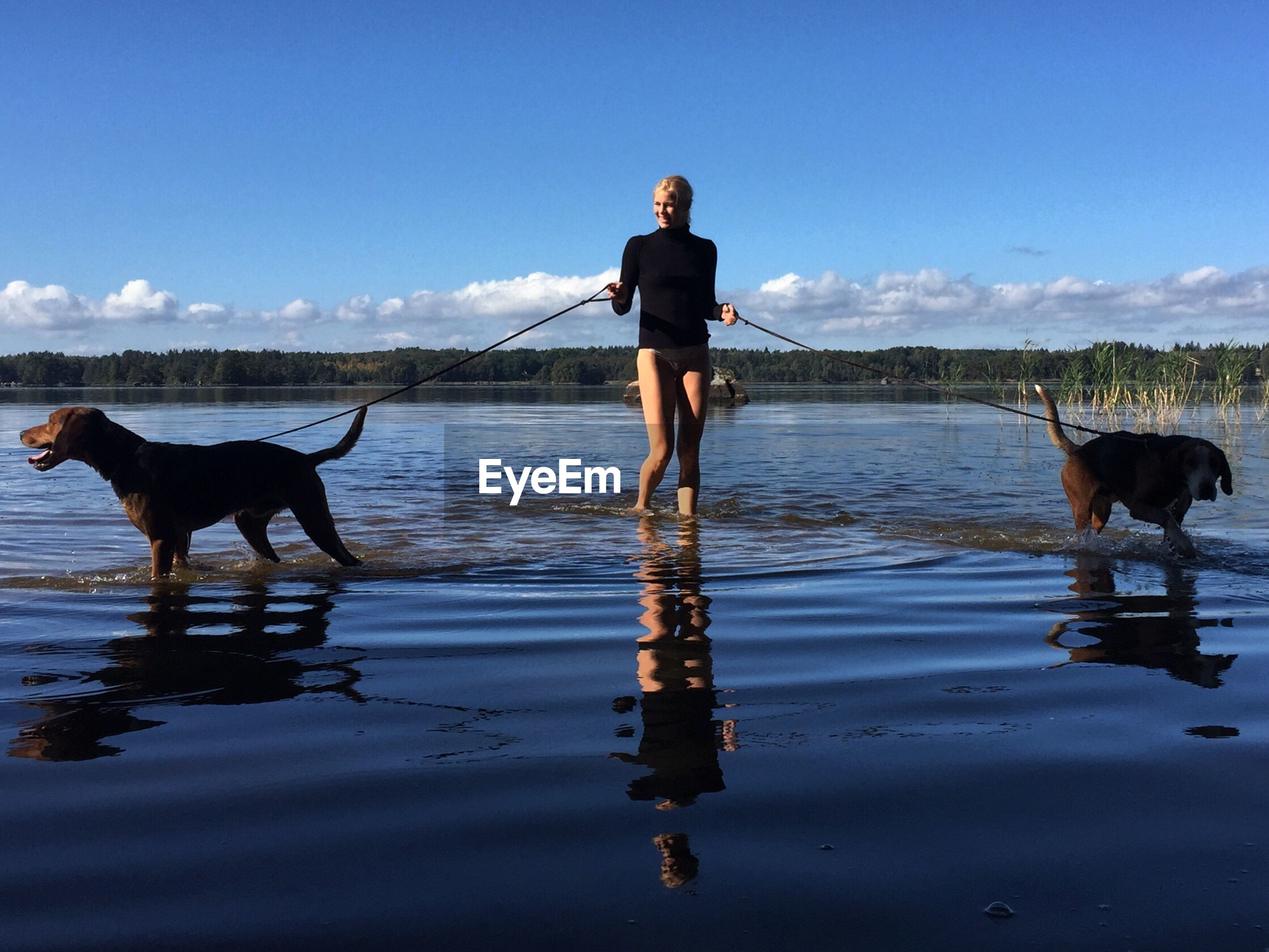 Woman with dogs standing in lake against sky