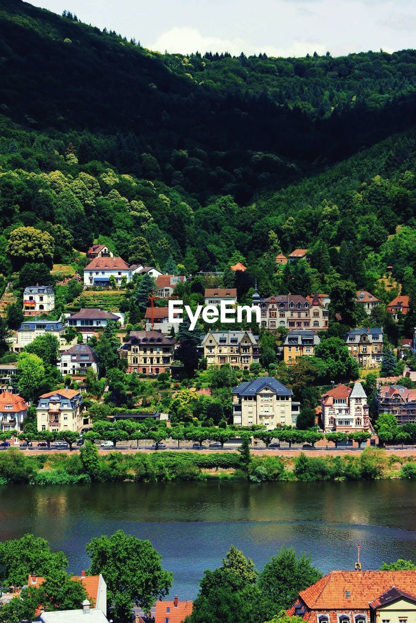 Houses On Hill By Neckar River