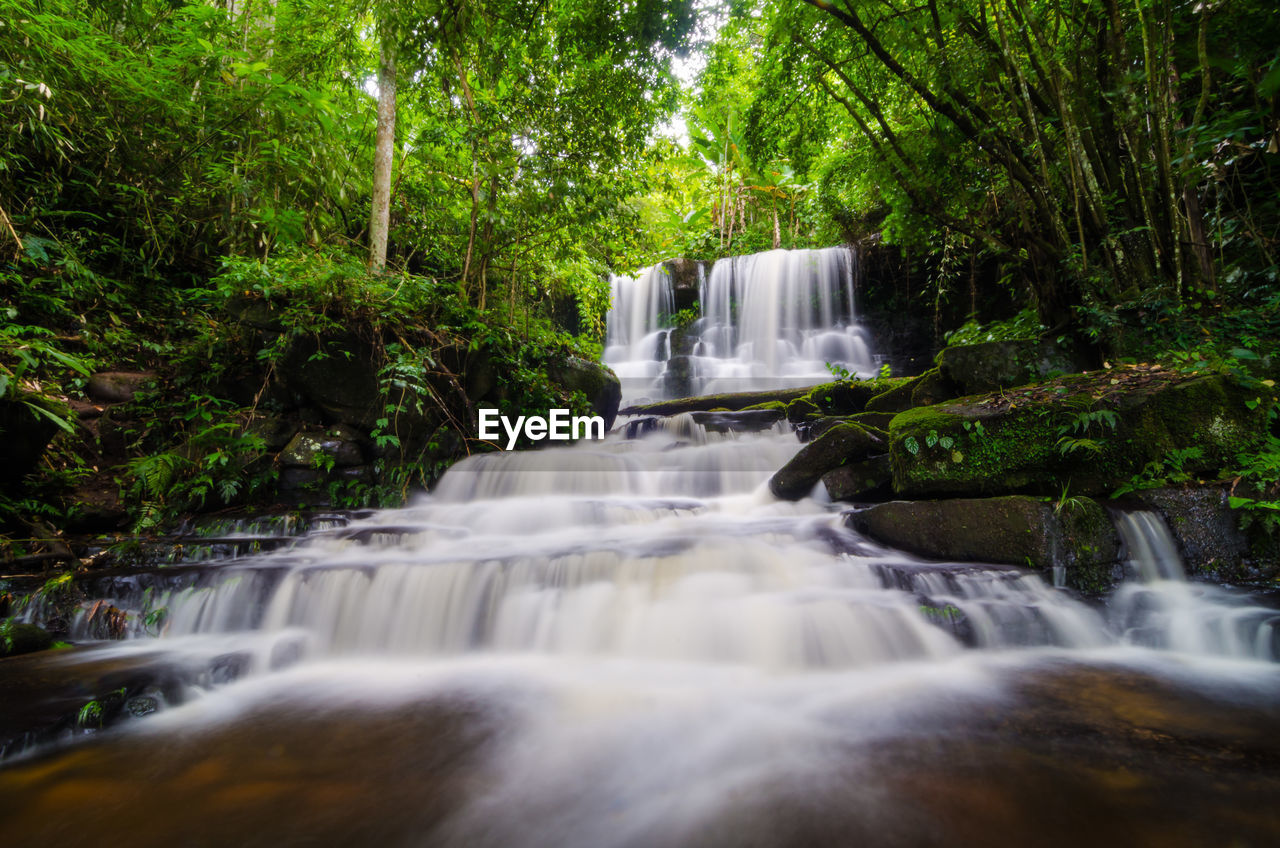 waterfall, flowing water, forest, tree, water, scenics - nature, long exposure, plant, motion, flowing, land, beauty in nature, nature, blurred motion, rock, environment, no people, rainforest, rock - object, power in nature, outdoors, falling water, woodland, stream - flowing water, running water