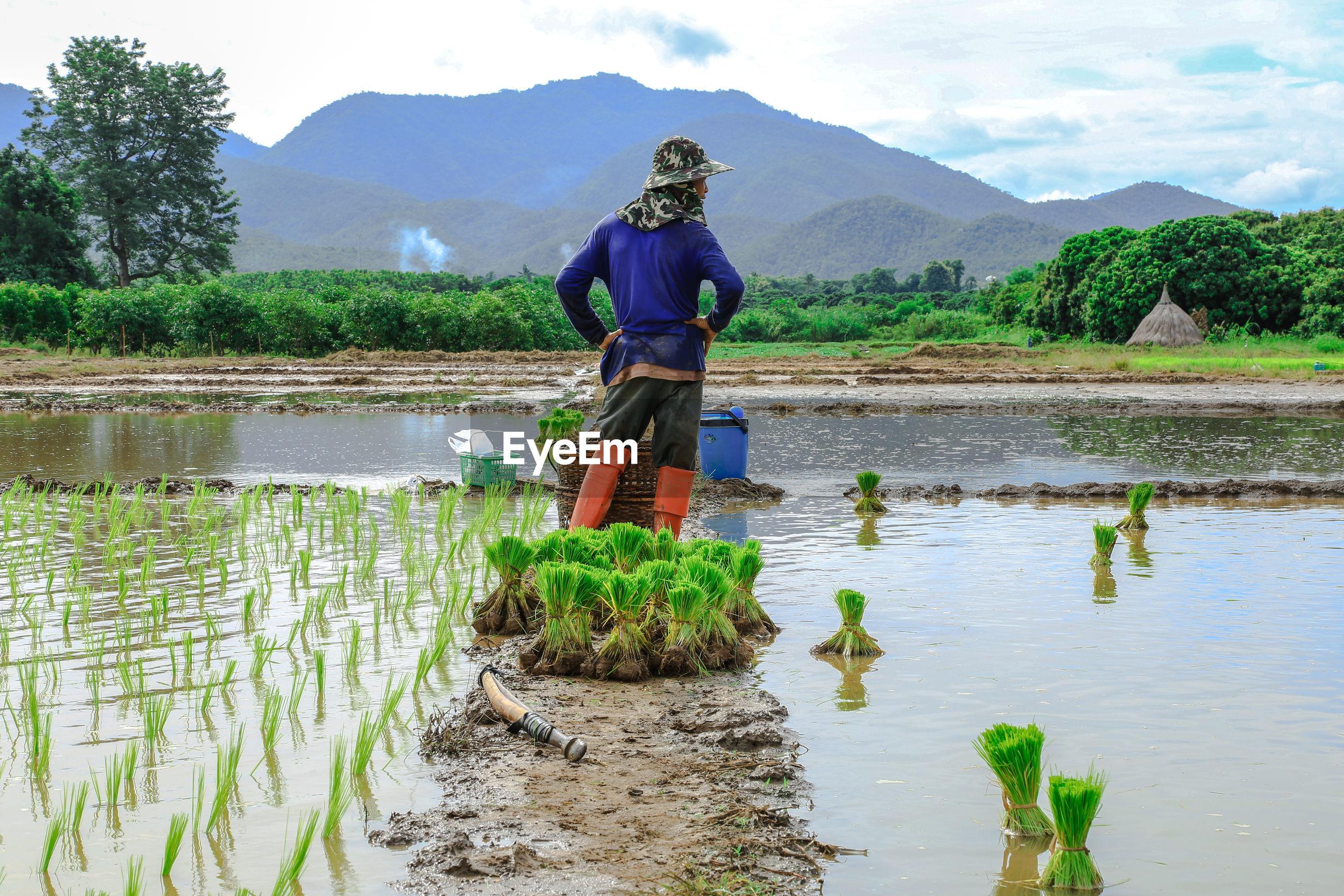 Farmer standing by on field