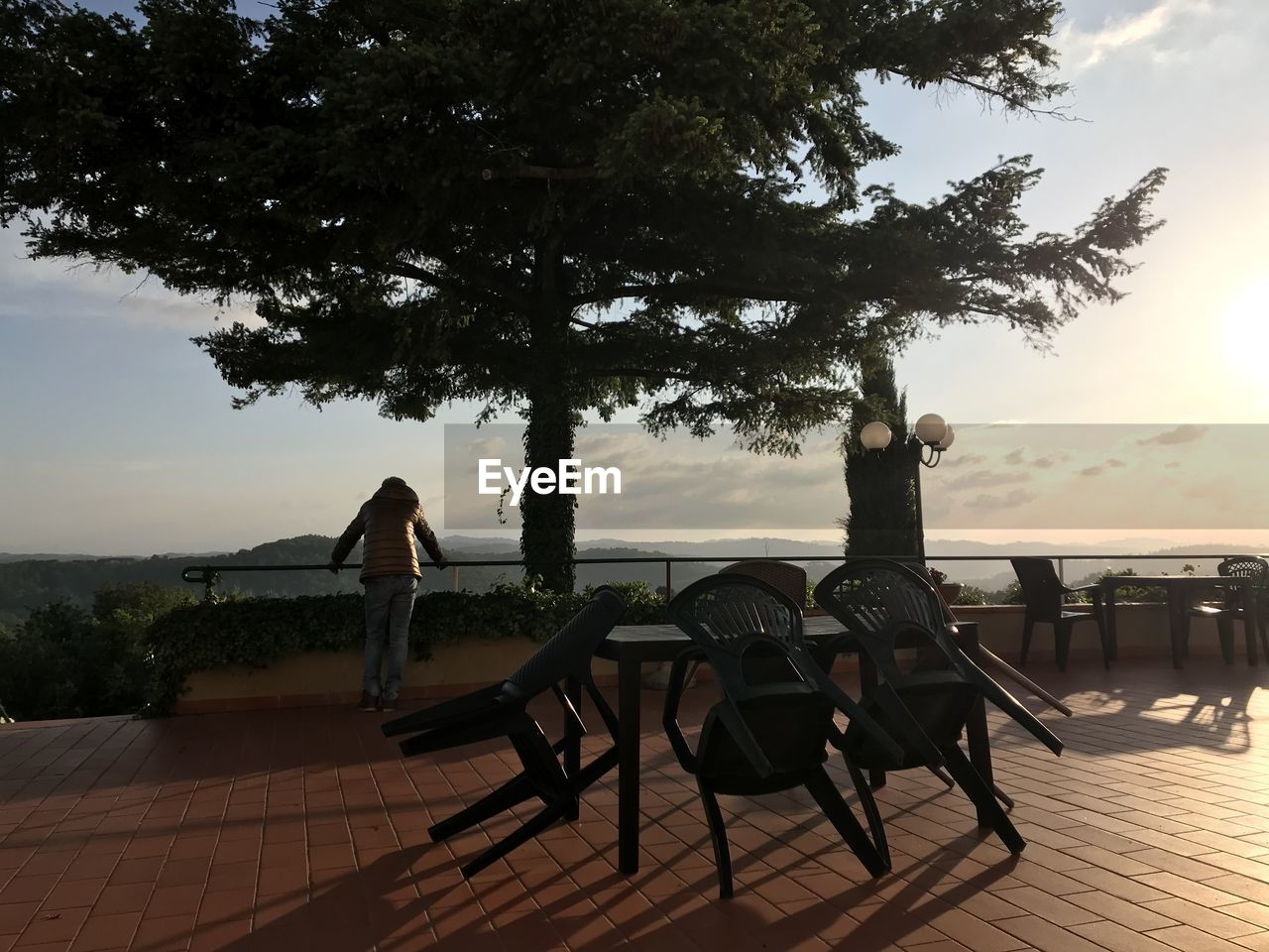 tree, plant, table, seat, sky, real people, chair, nature, adult, lifestyles, women, full length, sitting, men, leisure activity, people, two people, water, relaxation, growth, outdoors
