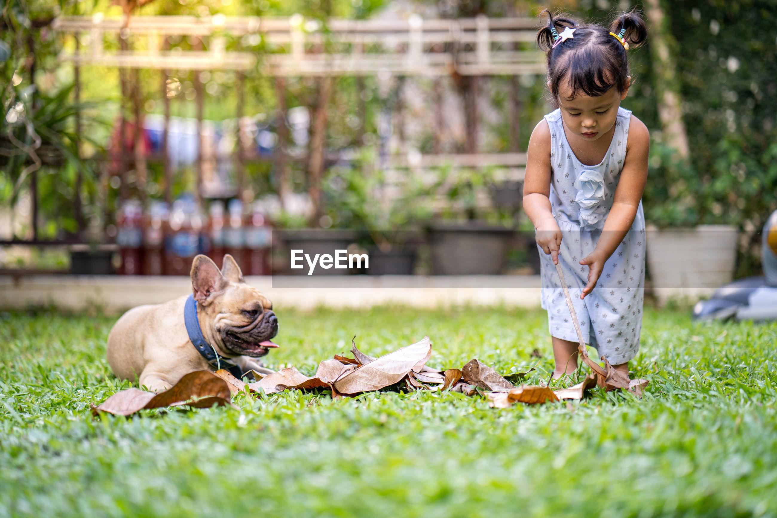 Full length of girl holding stick on grass by dog