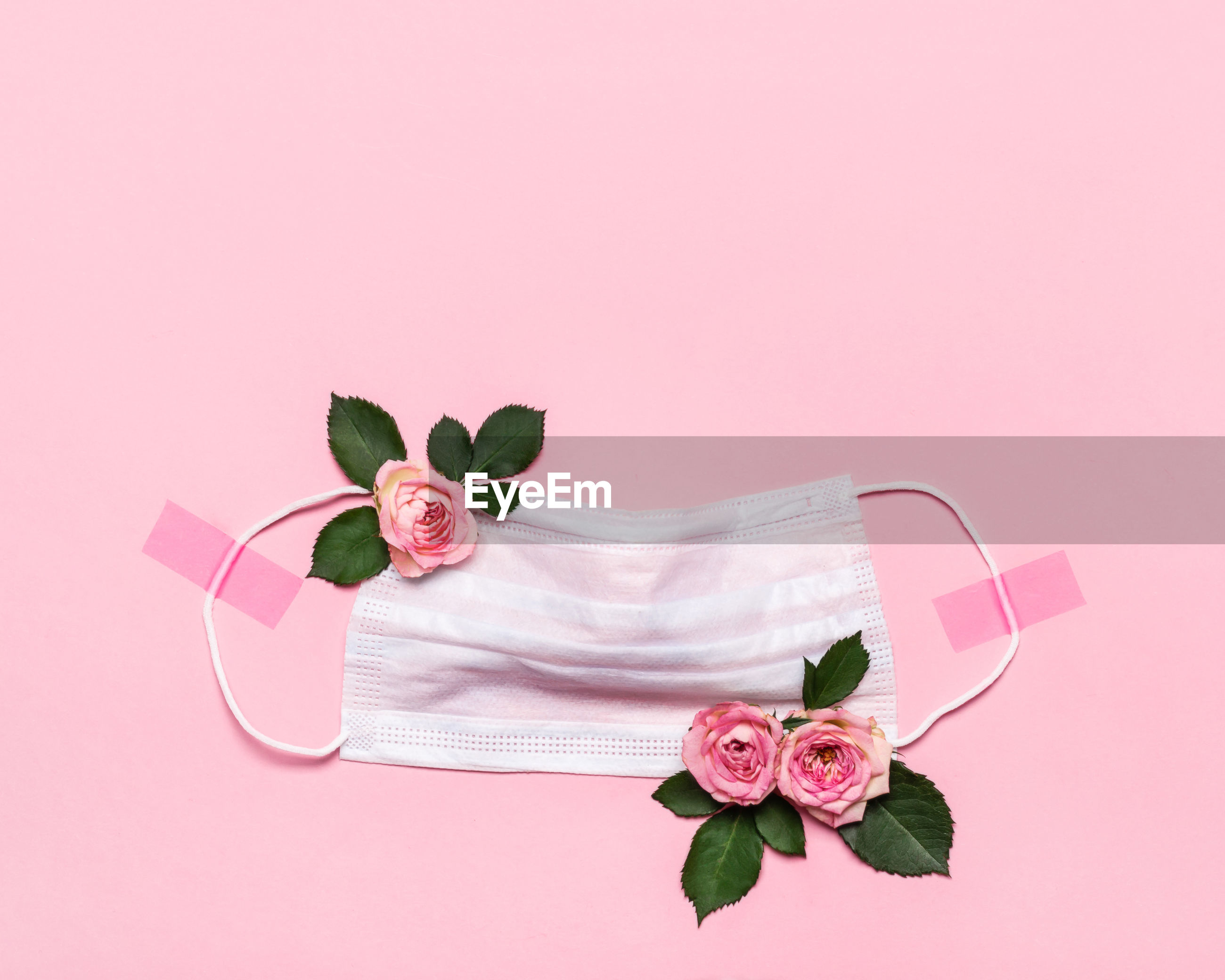 PINK ROSE FLOWER WITH LEAVES