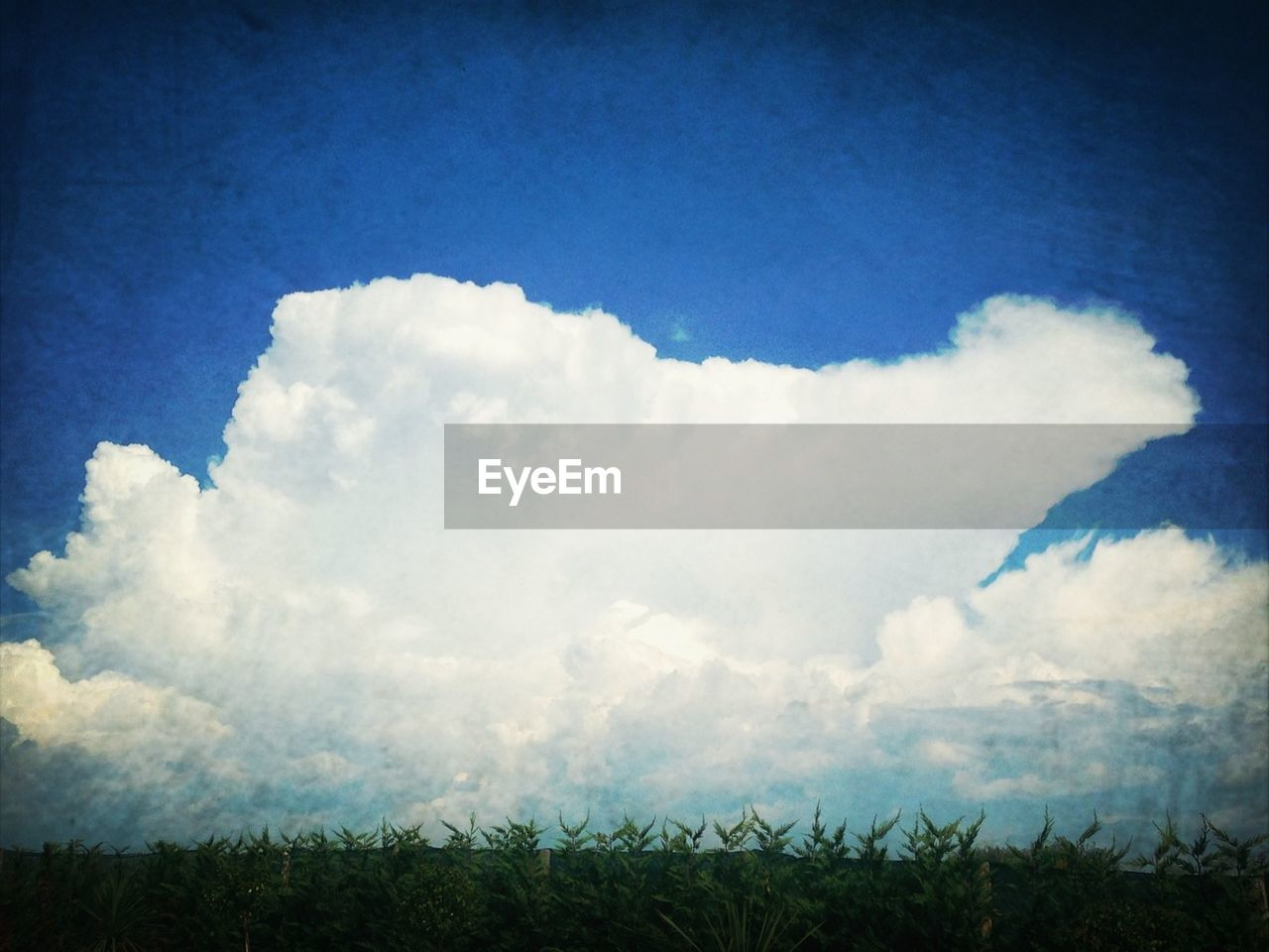 nature, sky, landscape, field, no people, beauty in nature, day, cloud - sky, tranquility, scenics, outdoors, grass, blue