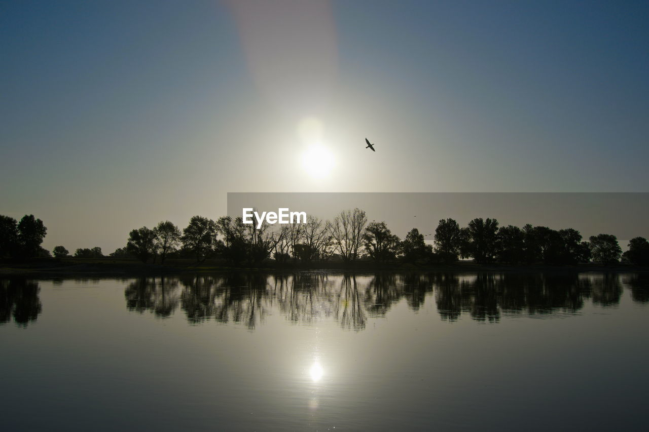 sky, reflection, beauty in nature, sun, water, scenics - nature, lake, tranquil scene, bird, tranquility, vertebrate, nature, silhouette, animal themes, flying, tree, animal, no people, animal wildlife, outdoors