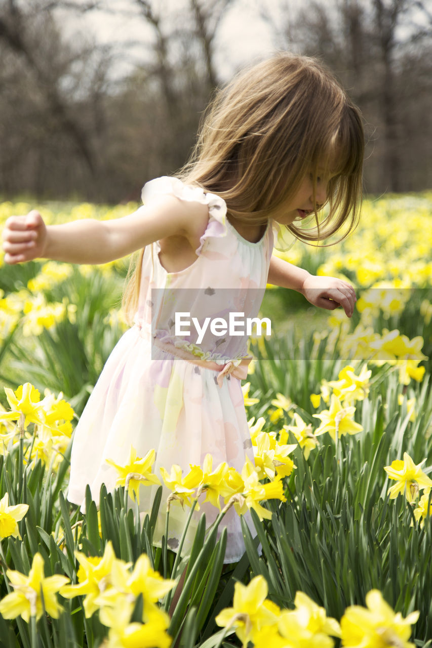 Girl Standing Amidst Daffodils On Field
