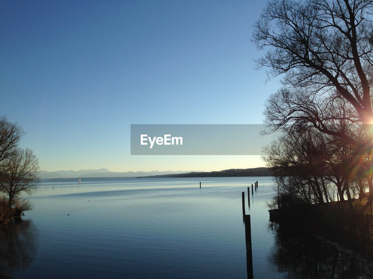 sky, water, tranquility, beauty in nature, tranquil scene, scenics - nature, tree, nature, copy space, plant, clear sky, no people, blue, sea, non-urban scene, idyllic, day, waterfront, outdoors