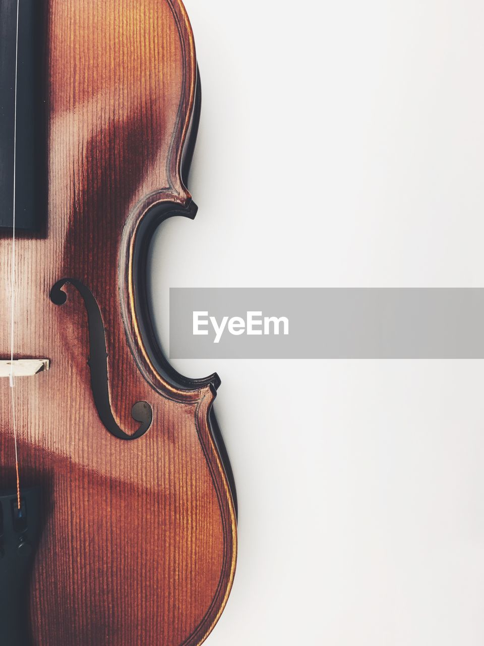 musical instrument, string instrument, musical equipment, music, arts culture and entertainment, violin, white background, musical instrument string, wood - material, indoors, studio shot, string, copy space, brown, close-up, no people, single object, still life, cut out, wall - building feature, classical style, double bass
