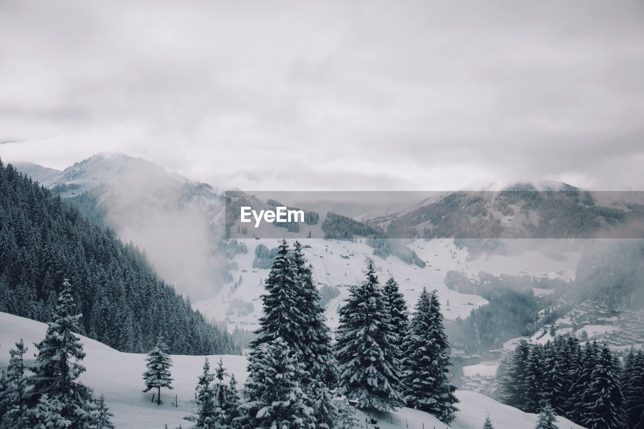 Scenic view of trees on snow covered mountains against cloudy sky