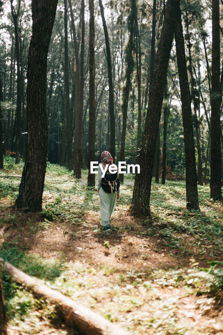 FULL LENGTH OF A BOY IN FOREST