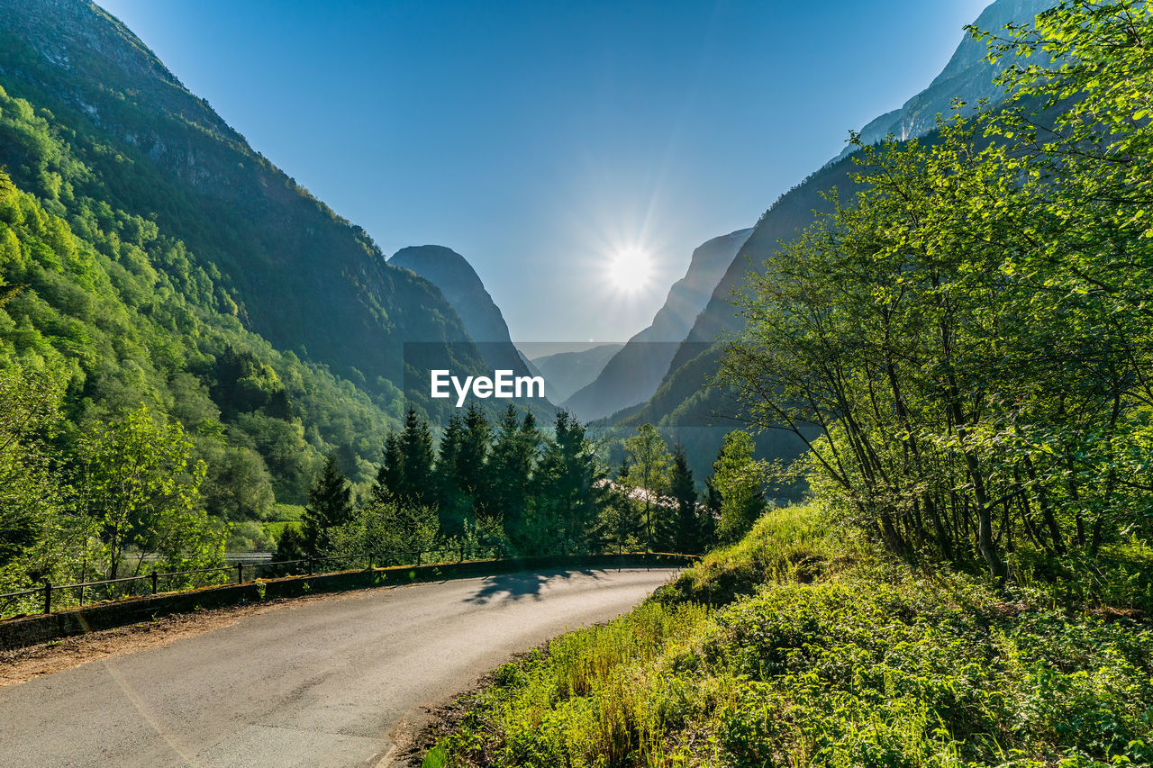 road, plant, tree, mountain, beauty in nature, scenics - nature, transportation, nature, sky, tranquil scene, sunlight, tranquility, non-urban scene, no people, the way forward, green color, environment, growth, direction, landscape, mountain range, outdoors