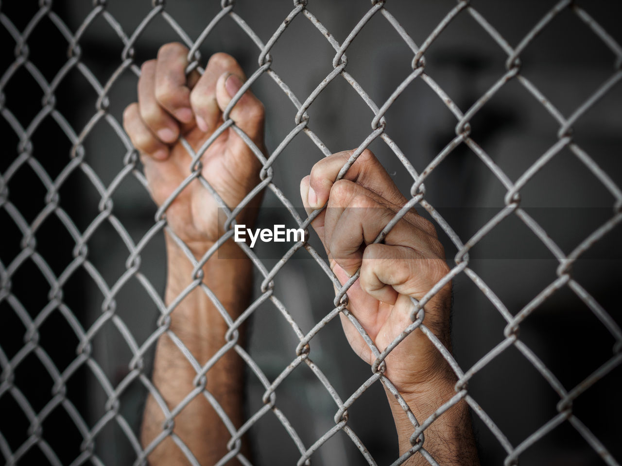 Cropped hands of person holding chainlink fence