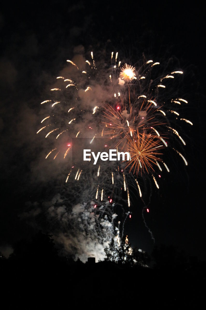 firework, celebration, night, event, motion, firework display, exploding, illuminated, arts culture and entertainment, long exposure, nature, low angle view, no people, sky, glowing, blurred motion, light, firework - man made object, smoke - physical structure, outdoors, dark, explosive, sparks