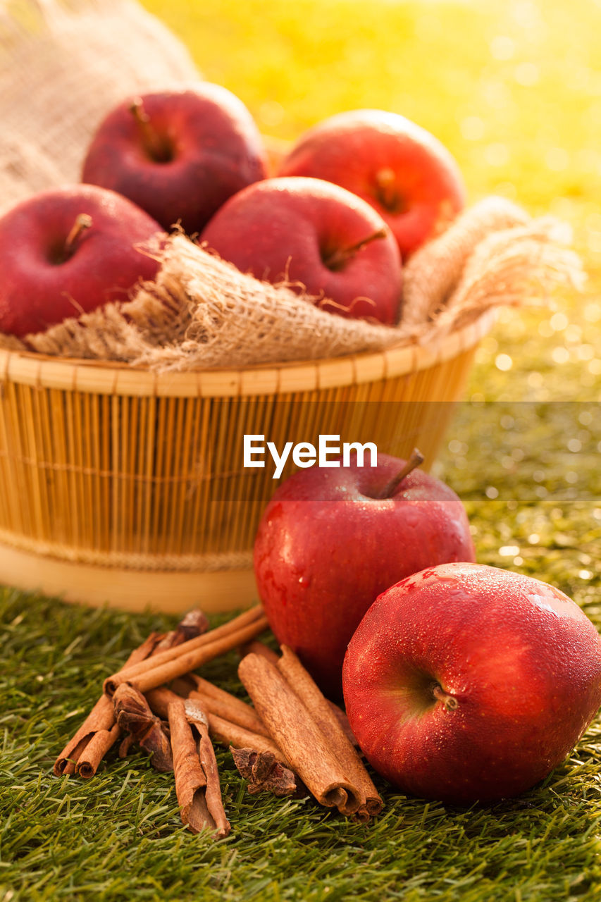 food and drink, food, basket, healthy eating, fruit, container, freshness, wellbeing, apple - fruit, no people, plant, close-up, red, grass, still life, nature, agriculture, ripe, bowl, group of objects