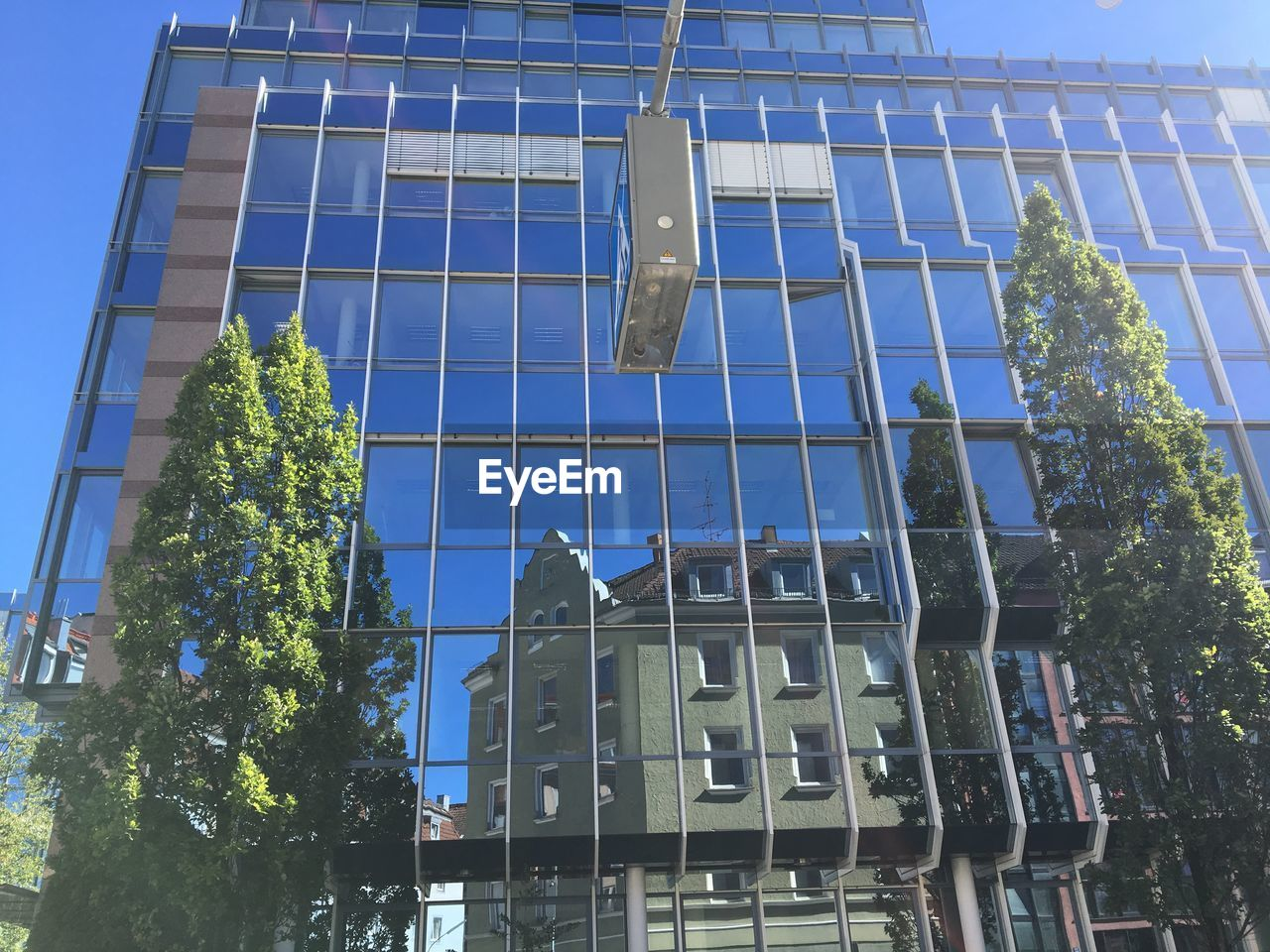 architecture, built structure, building exterior, building, low angle view, city, sky, modern, day, nature, no people, glass - material, office building exterior, plant, tree, reflection, window, office, blue, sunlight, outdoors, skyscraper, glass