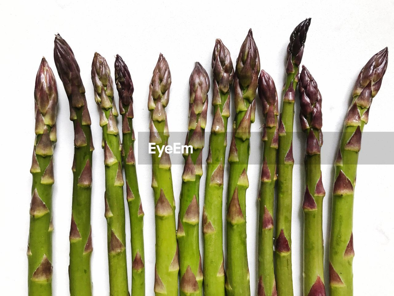 High angle view of asparagus against white background