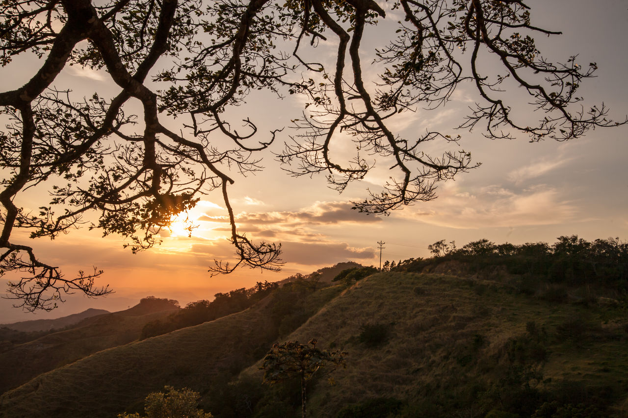 sky, tree, beauty in nature, sunset, plant, scenics - nature, tranquil scene, tranquility, cloud - sky, non-urban scene, environment, nature, no people, landscape, idyllic, branch, growth, orange color, land, mountain, outdoors