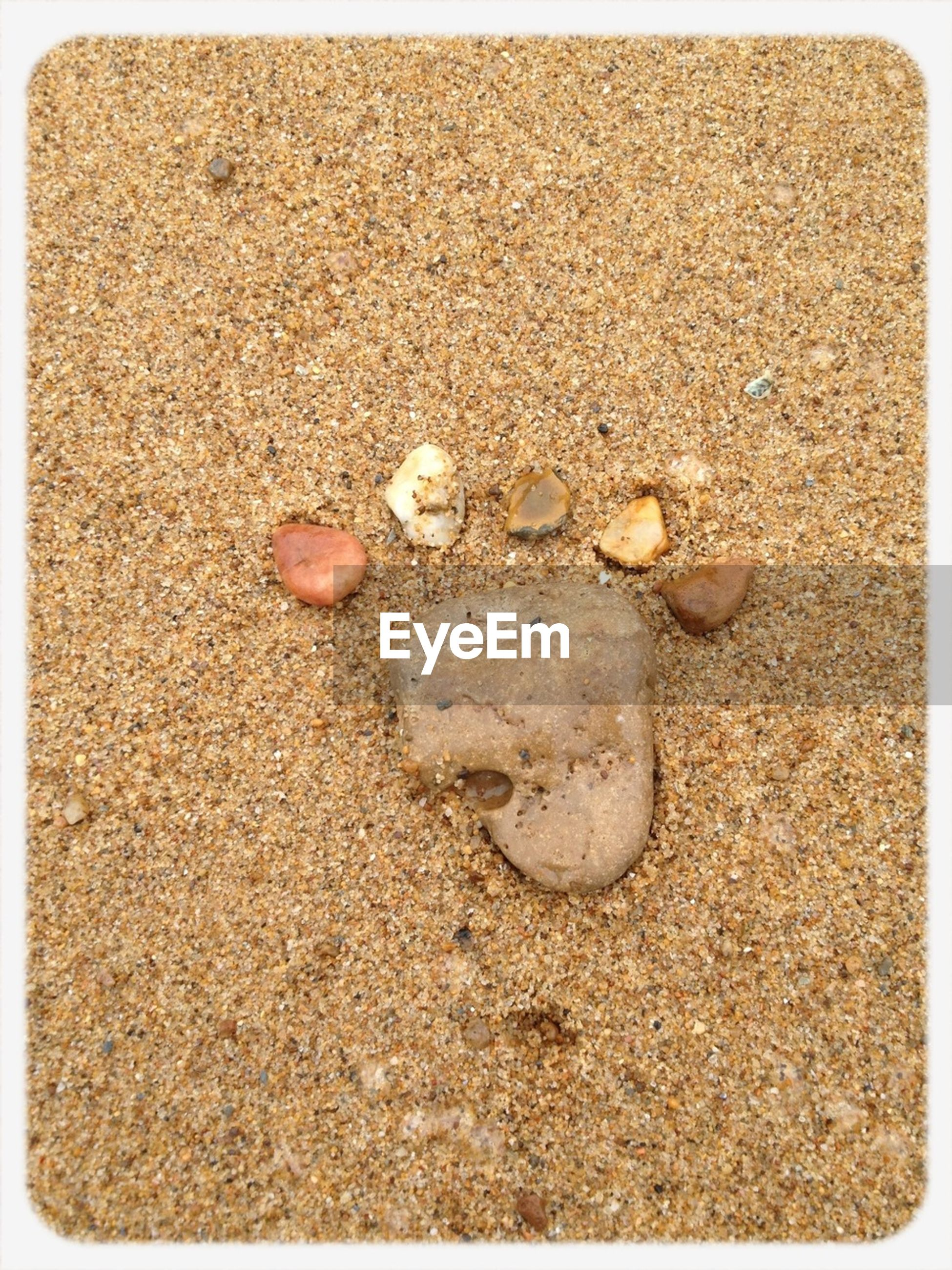 transfer print, auto post production filter, sand, beach, seashell, high angle view, pebble, stone - object, shore, nature, no people, close-up, day, outdoors, animal shell, ground, stone, vignette, shell, rock - object