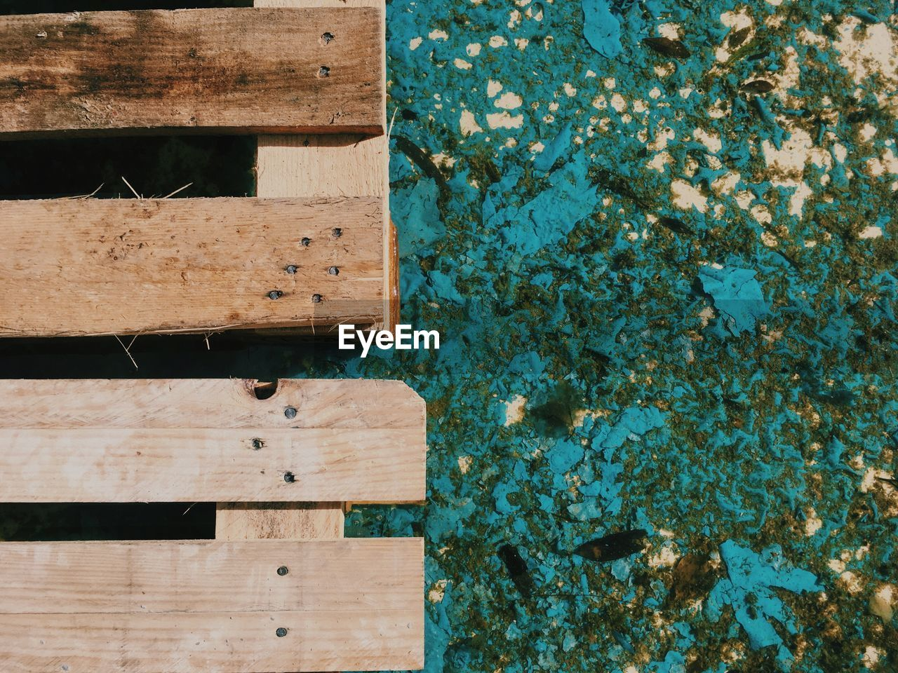 High angle view of wooden plank by pond