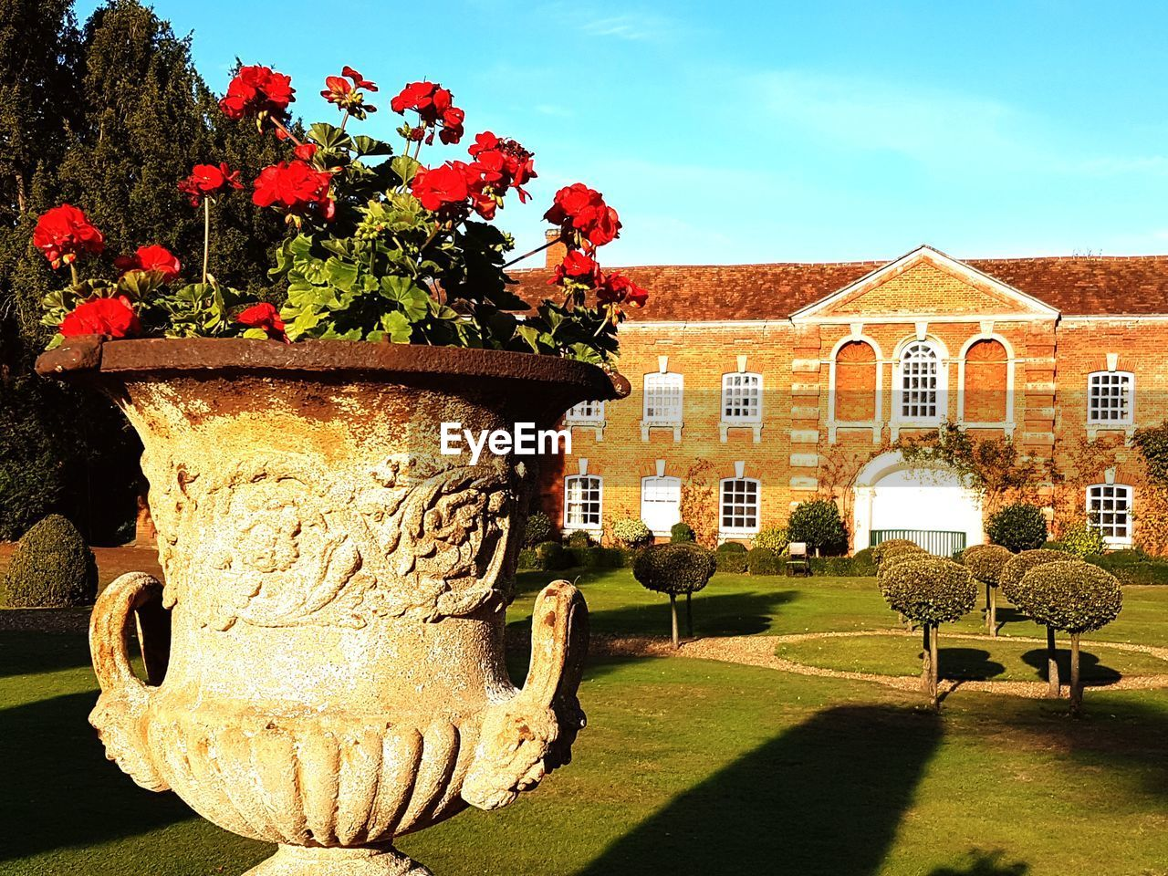 plant, nature, architecture, flowering plant, built structure, flower, building exterior, sunlight, sky, day, tree, growth, building, no people, garden, outdoors, shadow, formal garden, front or back yard, freshness